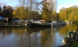 Boats on the Medway at Allington 10