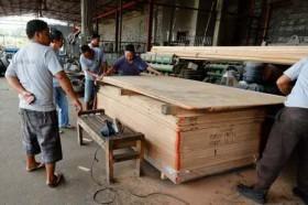 article Gavin Tacloban yolanda appeal a_html_m19838220