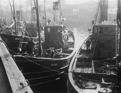 BFI fishermen